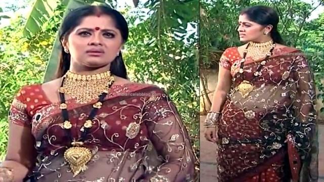 Sudha chandran Tamil TV actress PonDTS1 9 hot saree pics