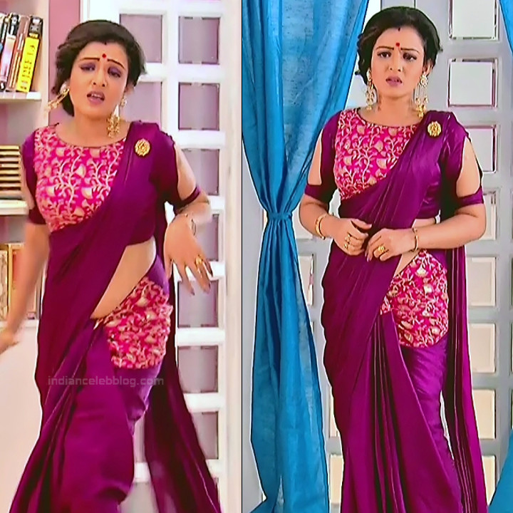 Bengali TV serial actress CompGS1 16 hot saree pics