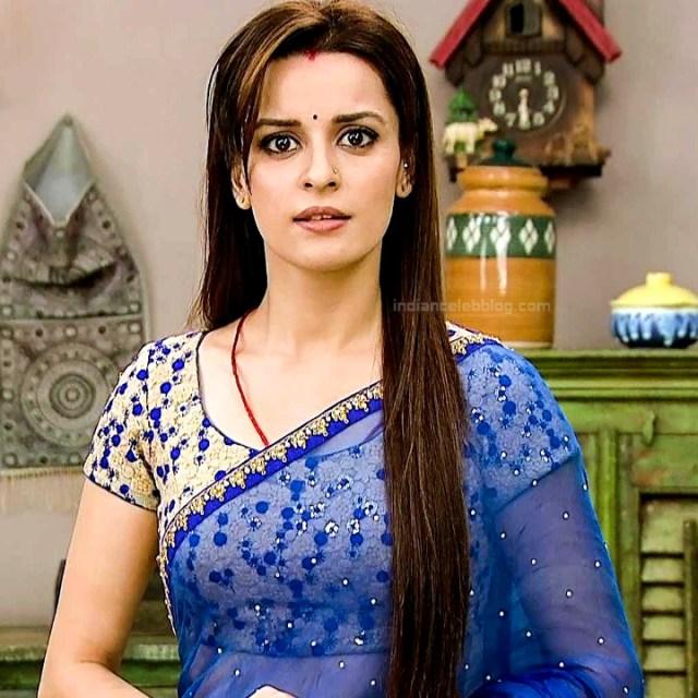 Ekta Kaul Hindi serial actress CTS1 6 hot saree photo