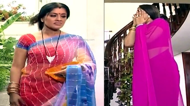 Sudha chandran tamil tv actress Pondatti TS2 10 hot sari pics