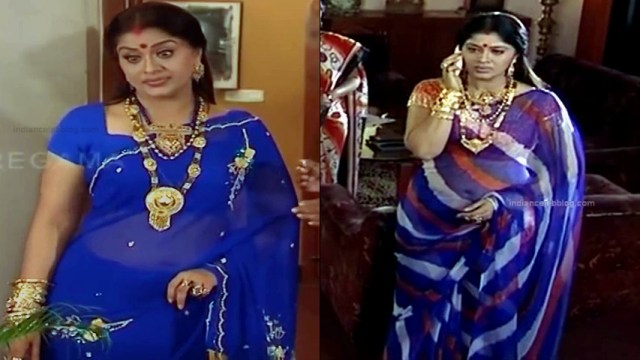 Sudha chandran tamil tv actress Pondatti TS2 2 hot saree navel pics