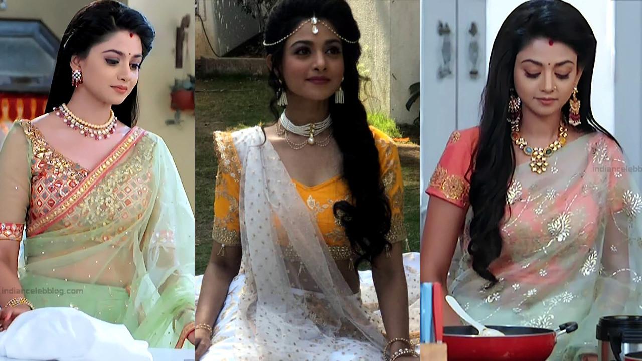 Tanvi Dogra Hindi TV transparent sari caps