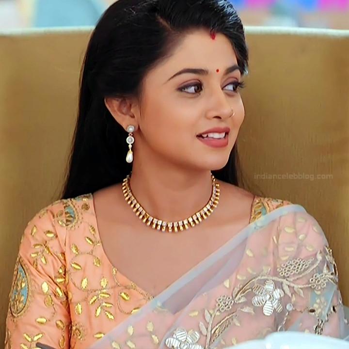 Tanvi Dogra Hindi serial actress JijiMS1 15 sari photo