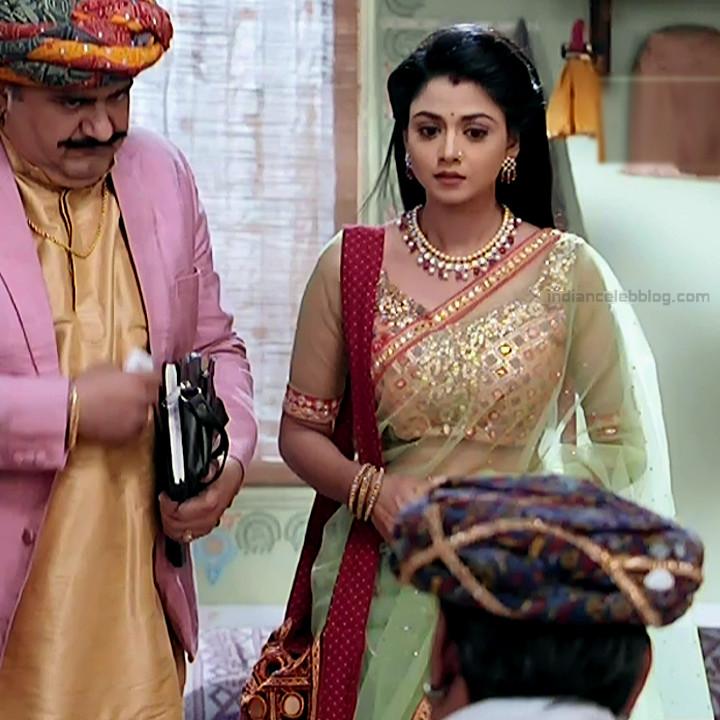 Tanvi Dogra Hindi serial actress JijiMS1 9 saree pic