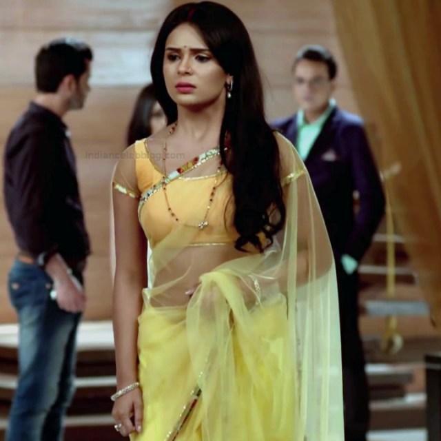 Sonal Vengurlekar hindi tv celeb 18 hot sari photo