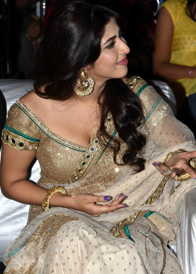 Sonarika Bhadoria hindi tv actress Event CTS3 16 hot saree photo