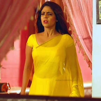 Malavika wales tamil tv actress Nandini S1 1 hot sari photo