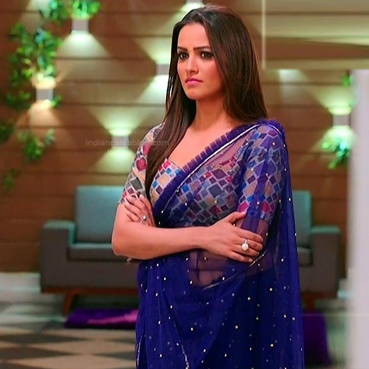 Anita hassanandani hindi tv actress Naagin S1 11 hot saree photo
