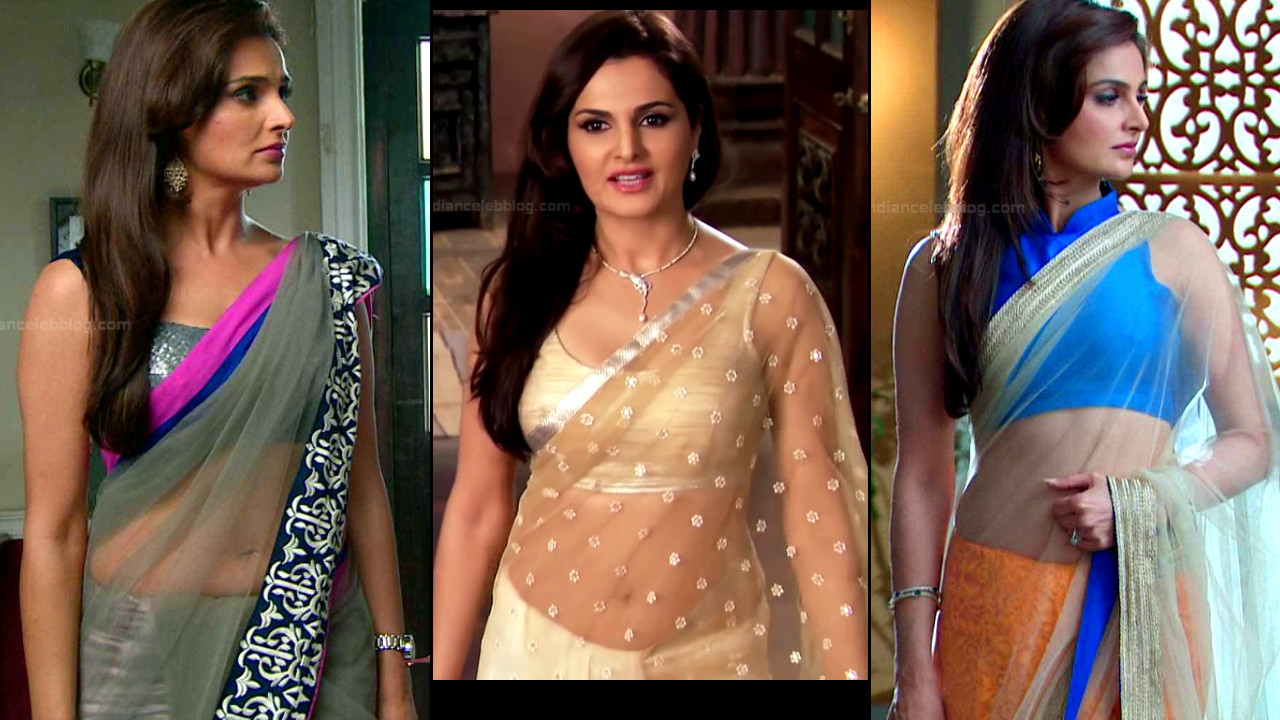 Monica bedi sexy low hip see through saree navel tv caps
