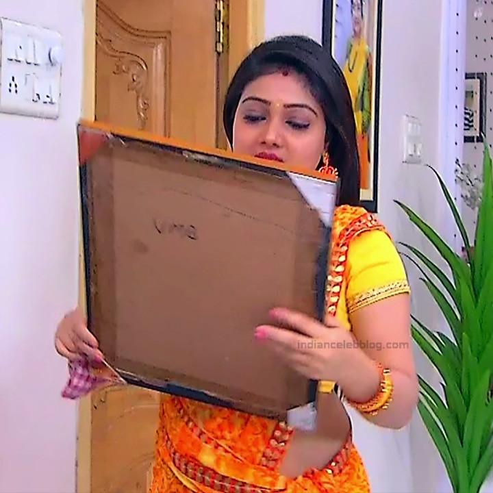 Priyanka nalkar tamil serial actress roja s1 14 sari photo