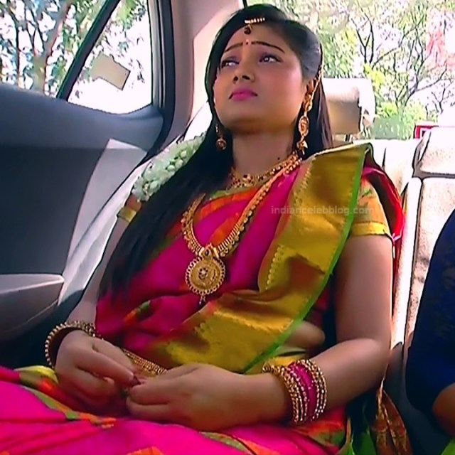 Priyanka nalkari tamil serial actress roja s1 15 sari photo