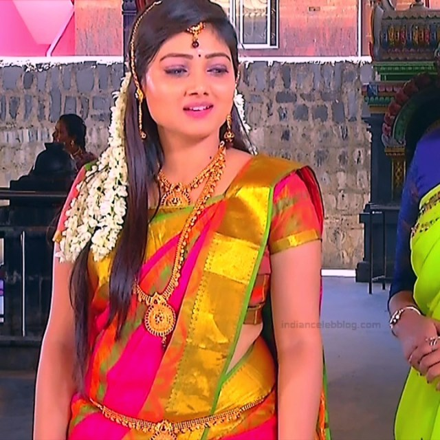 Priyanka nalkari tamil serial actress roja s1 17 sari photo