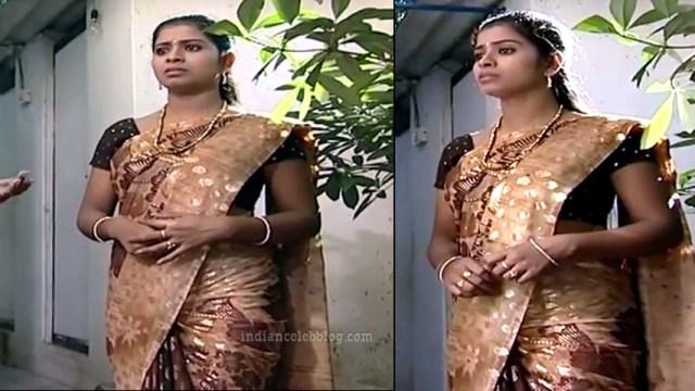Jangiri Madhumitha Tamil TV PondattiTS1 6 sari photo