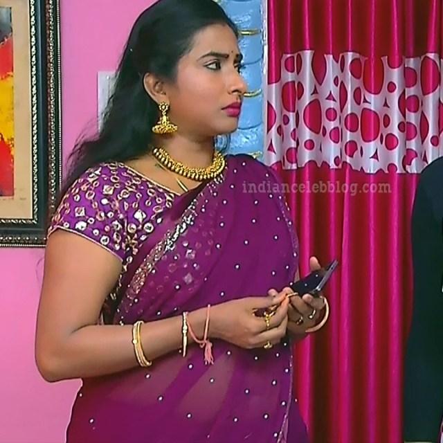 Ramya shankar Tamil TV actress Roja S1 1 Saree photo