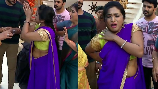 Ramya shankar Tamil TV actress Roja S1 11 Sari pics