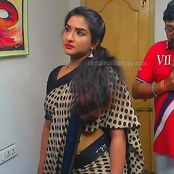 Ramya shankar Tamil TV actress Roja S1 4 hot Saree photo