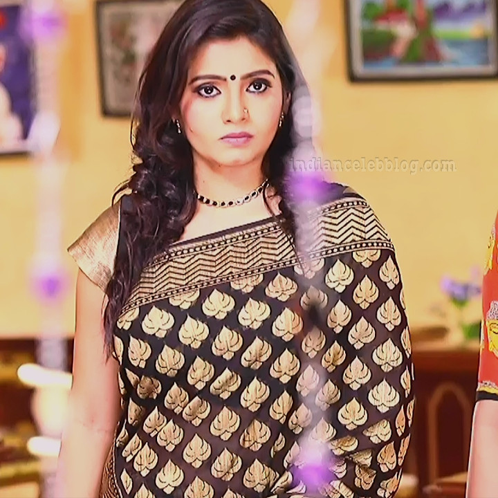 Srithika tamil TV actress KVS1 7 hot sari photo