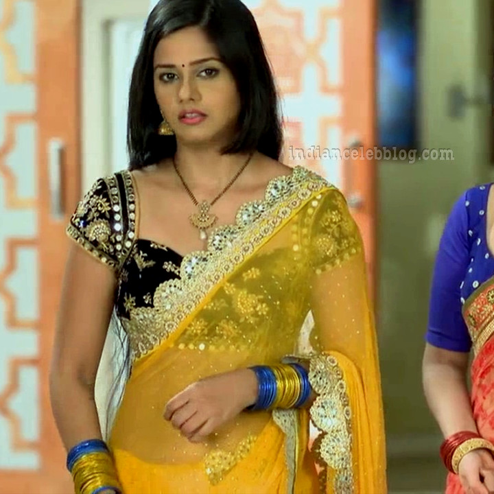 Daljeet Kaur Navel Show In See Through Saree Hd Caps -3681