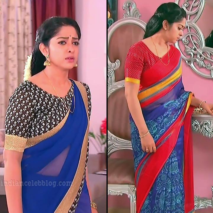 Jyothi Telugu TV serial actress MscC5 4 sari pic
