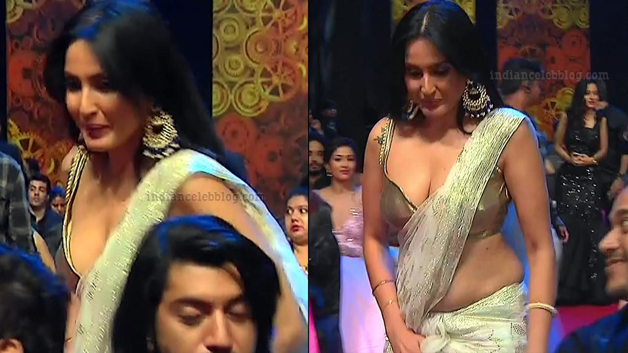 Kamya-punjabi-in-sari-kesh-king-gold-awards-2018_7