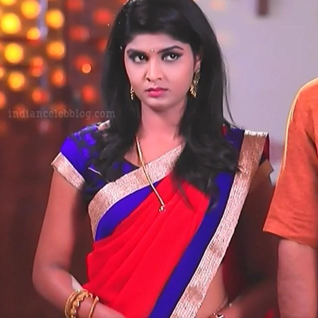 Manya anand kannada TV actress BiliHS2 1 hot saree photo