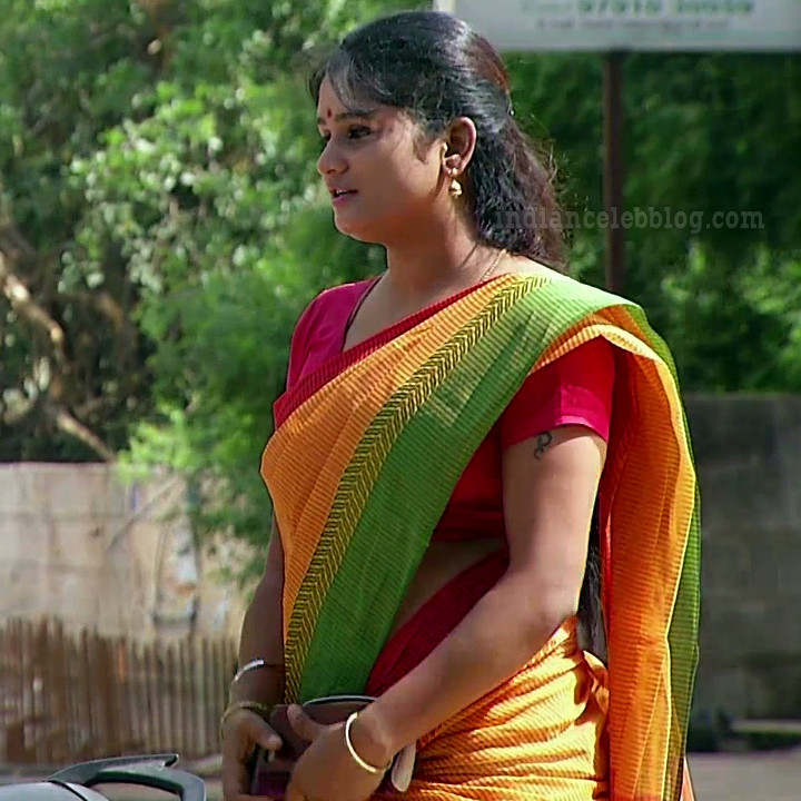 Tamil TV serial actress MscCmplS1 11 saree photo