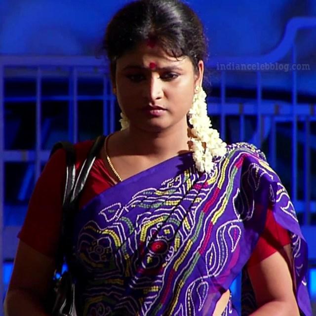 Tamil TV serial actress MscCmplS1 12 saree photo