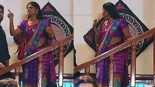 Tamil TV serial actress MscCmplS1 2 saree pics