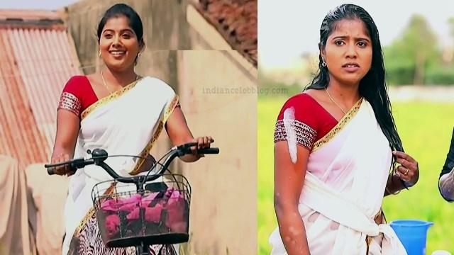 Tamil TV serial actress MscCmplS1 5 sari pics