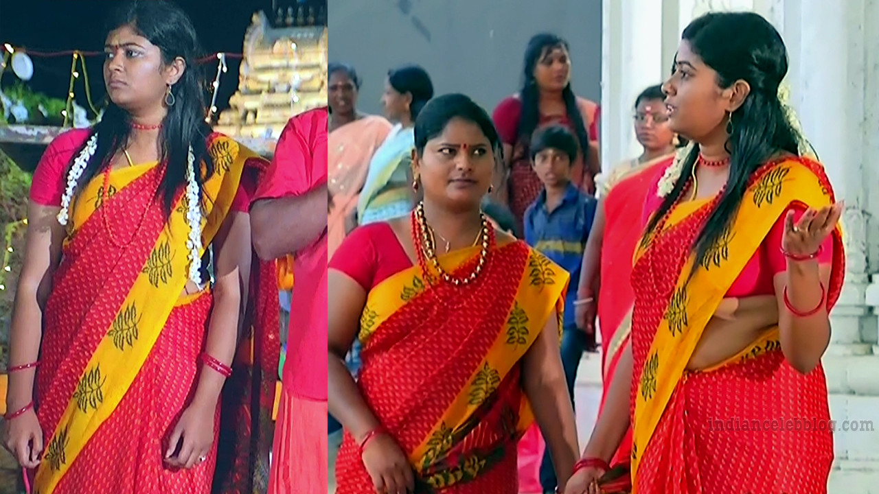 Tamil TV serial actress MscCmplS1 8 sari pics