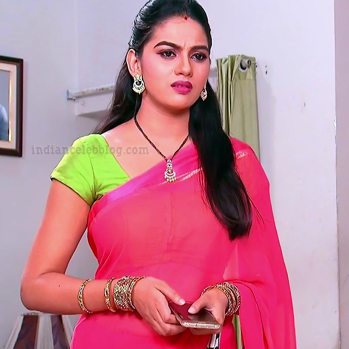 Telugu TV serial actress MscC5 11 saree photo