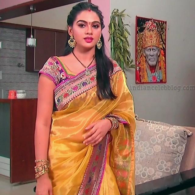 Telugu TV serial actress MscC5 3 saree pic