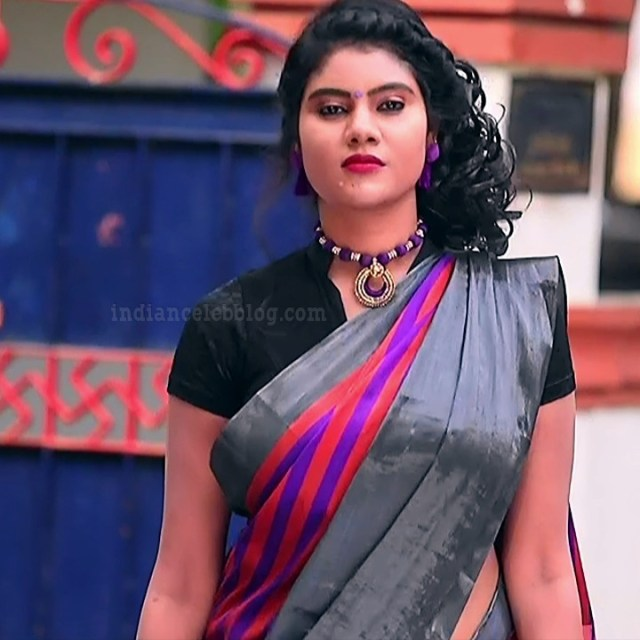 Nivisha tamil tv actress eeramana rojave s1 11 sari photo
