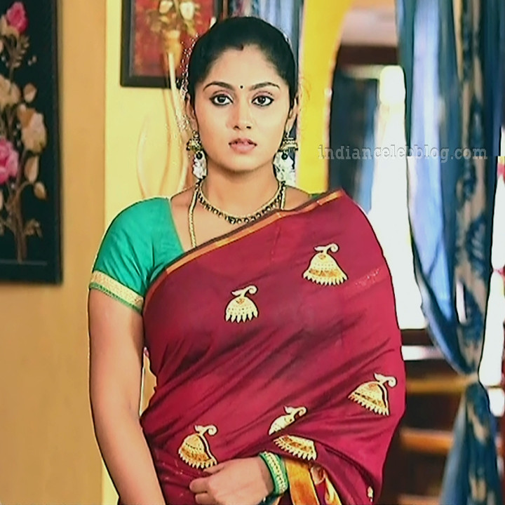 Sreethu nair Kalyanamam kalyanam serial S1 19 saree photo