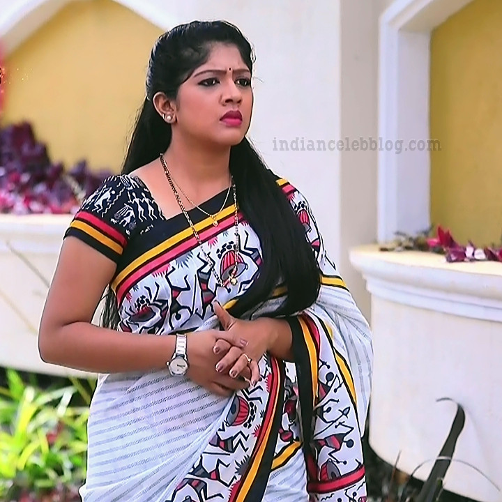 Meghana shankarappa kannada tv actress Kinnari S4 1 sari pic