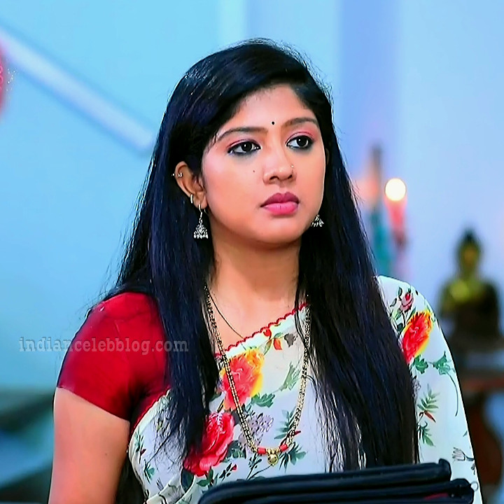 Meghana shankarappa kannada tv actress Kinnari S4 2 sari pic