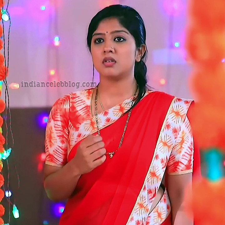 Meghana shankarappa kannada tv actress Kinnari S4 9 saree photo