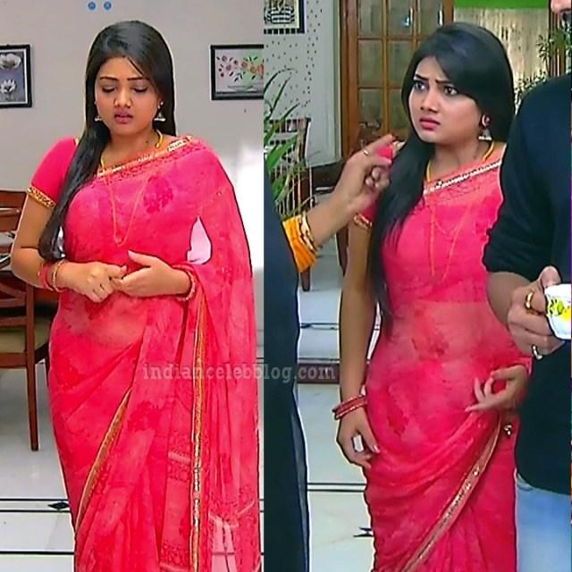 Priyanka nalkari roja serial actress S2 2 saree pic