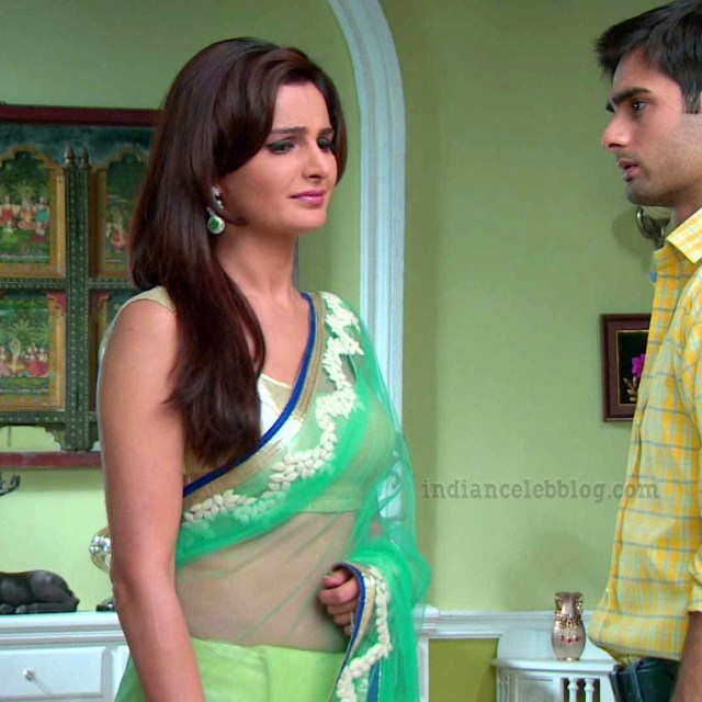 Monica Bedi Hindi TV actress YTDS2 8 hot saree photo
