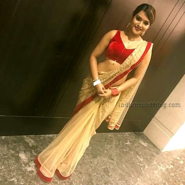 Shilpa Raizada Hindi TV actress CTS1 6 hot saree photo
