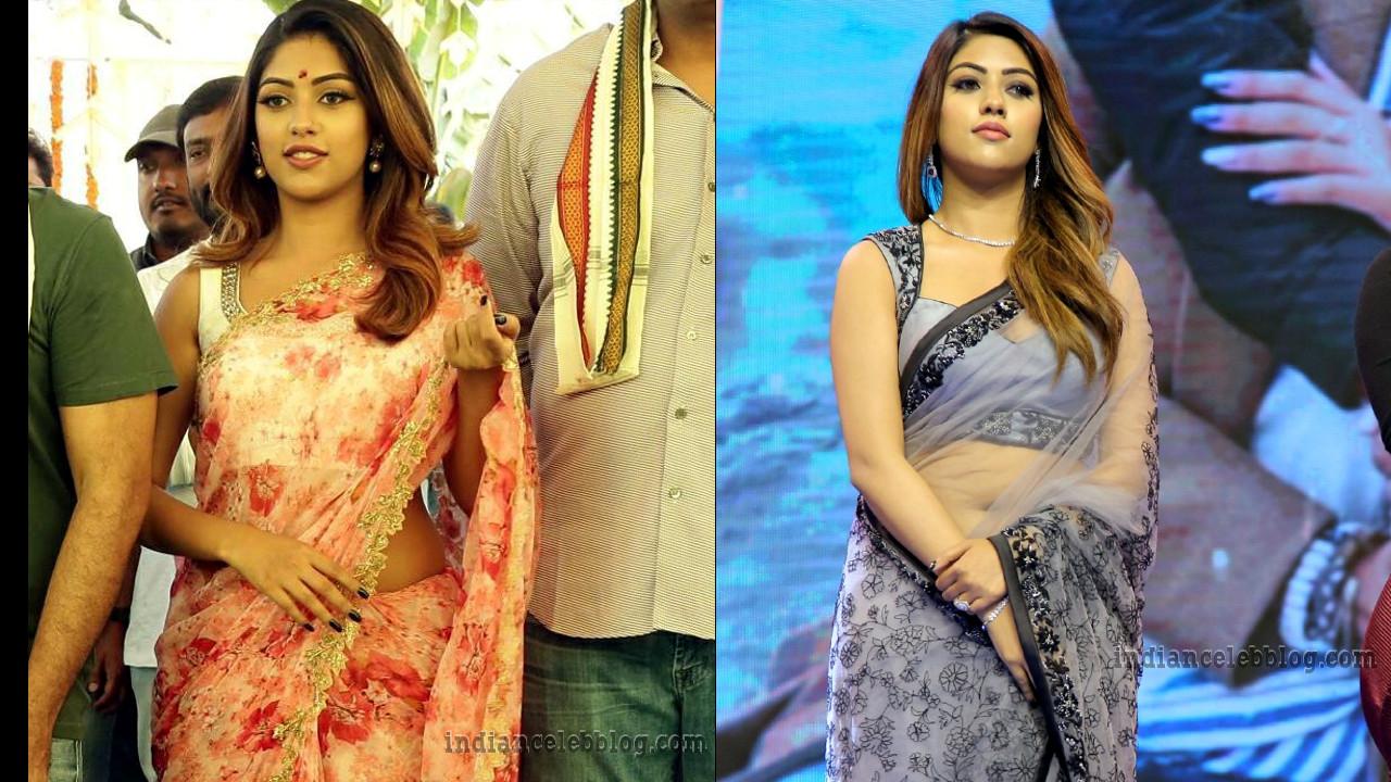 Anu Emmanuel Telugu event hot saree Photos
