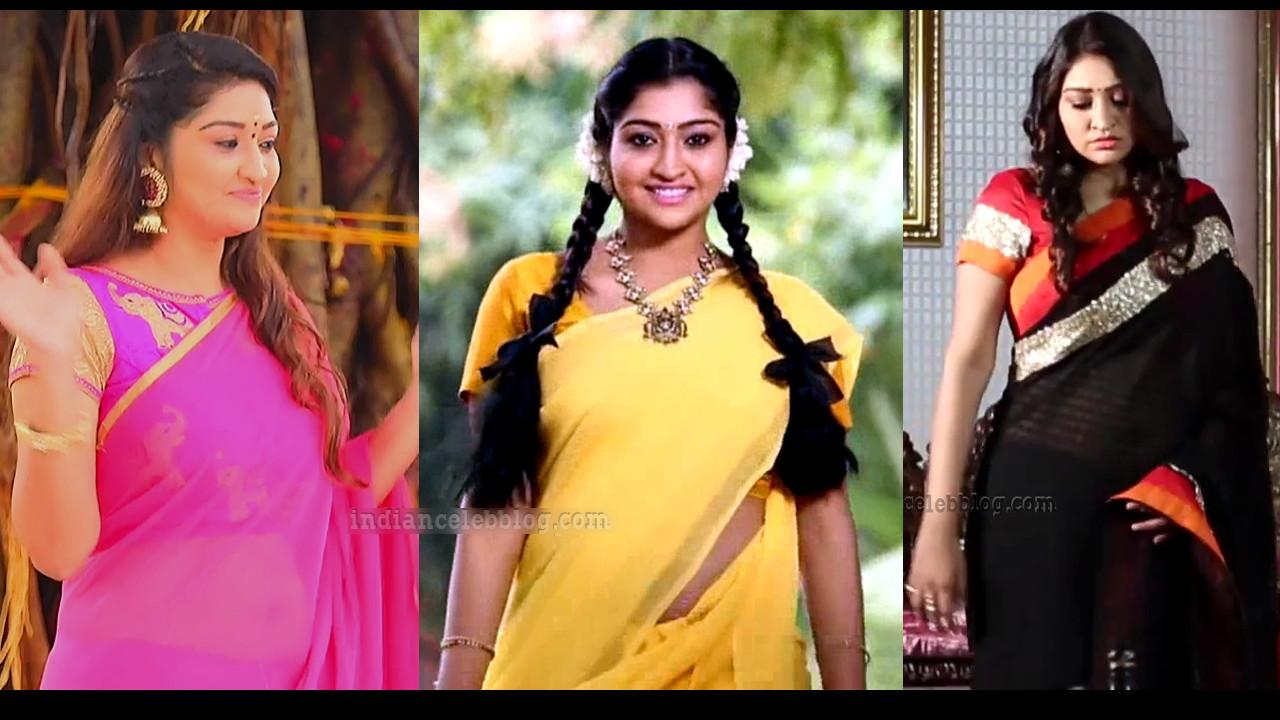 Neelima Rani Tamil serial actress hot Saree HD caps