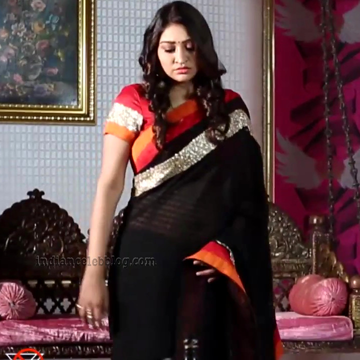 Neelima rani tamil tv actress Aranmanai KS1 4 saree photo