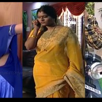 Neepa tamil TV actress hot saree navel show.