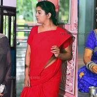 Mahalakshmi Devadhaiyai kanden Tamil serial hot sari pics