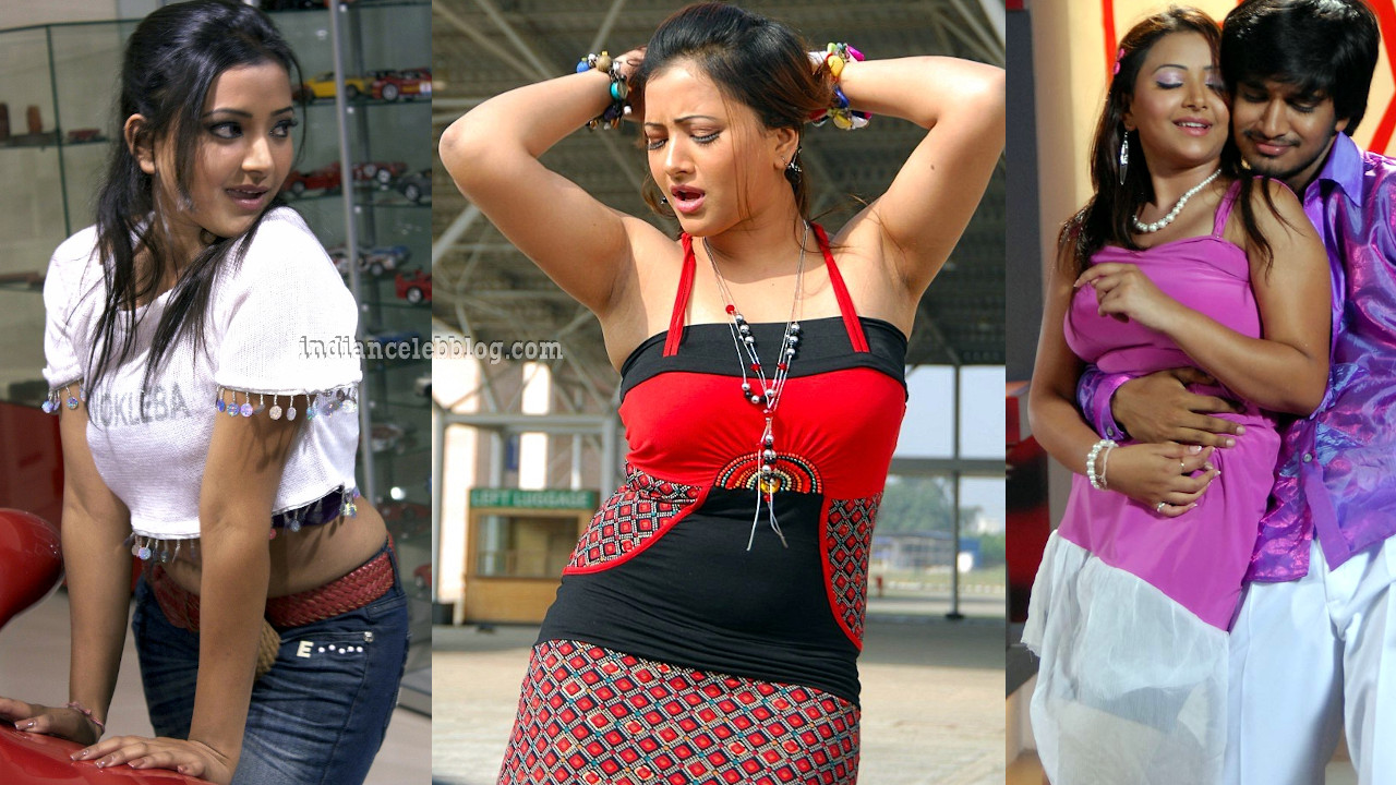 Shweta basu south indian film and tv celeb hot stills