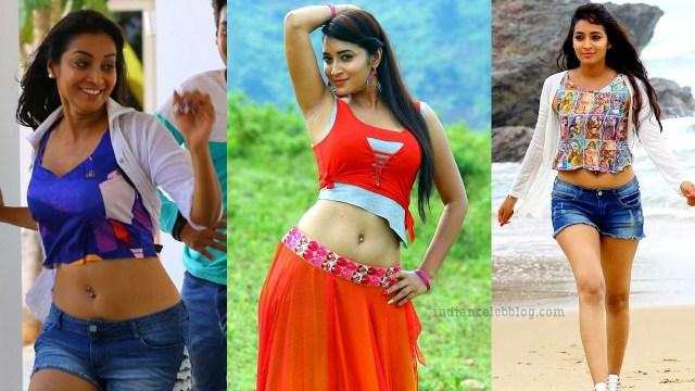 Bhanu shree telugu actress IDS1 1 thumb