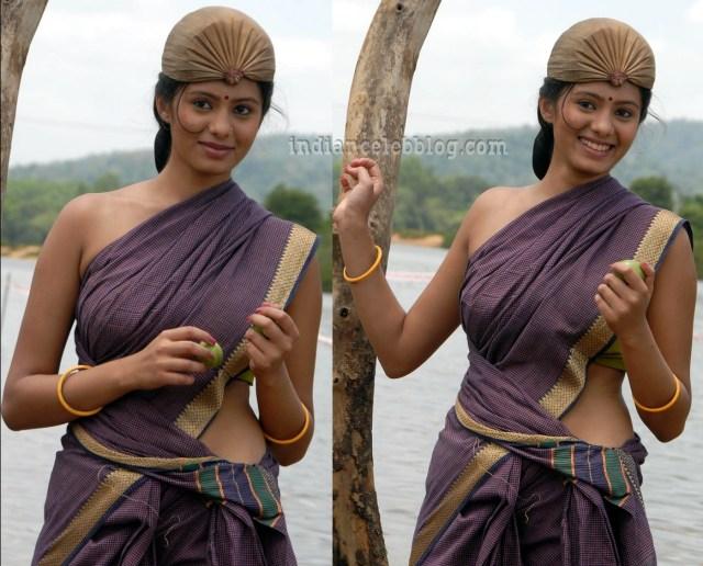 Deepa sannidhi kannada actress MSS1 8 hot sari pic