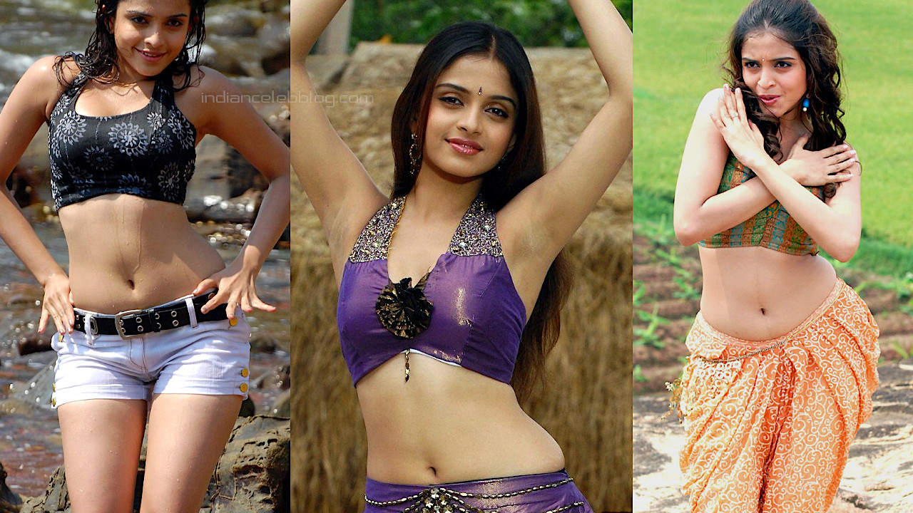 Sheena shahabadi telugu actress hot navel show stills photos