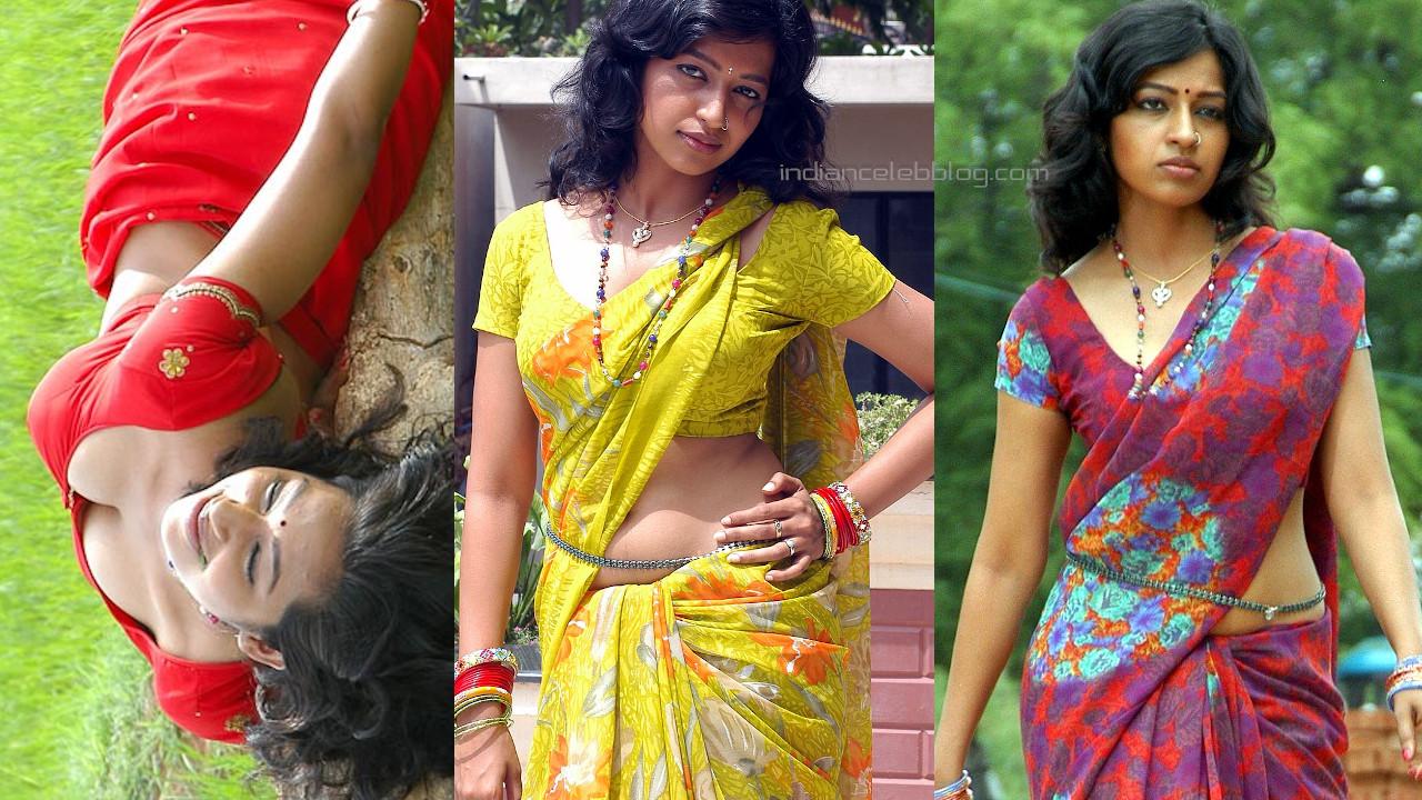 Teertha telugu actress hot cleavage show in saree stills